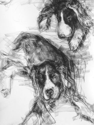Barbara fugate double dog portrait 2010