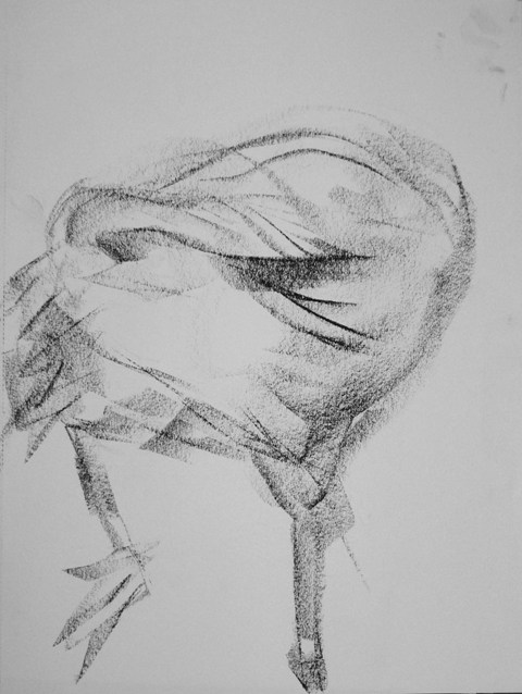 Barbara_Fugate_2011drawing6