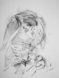 Barbara_Fugate_2011drawing1