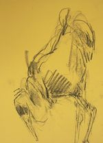 Barbara_Fugate_2012_ZooDrawing3