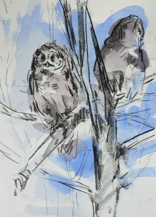 Barbara_Fugate_2012_ZooDrawing5