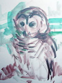 Barred_owl_barbara_fugate