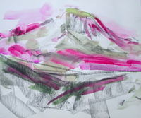 Pink_wc_sketch_mt_rainier_july_17_barbar