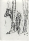 Wolf_in_trees